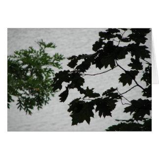 Walden Pond Card