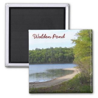 Walden Pond, Concord, MA 2 Inch Square Magnet
