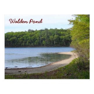 Walden Pond, Concord, MA Postcard