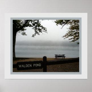 Walden Pond Poster - Window on the Mist