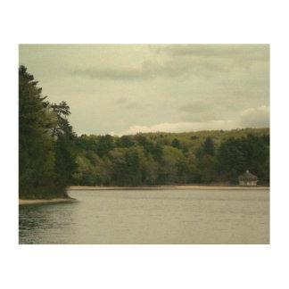 Walden Pond wood print: green trees gray sky Wood Wall Art