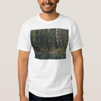 Waldo Lake, Oregon T Shirt