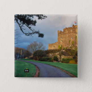 Wales - A private welsh castle near St. Pinback Button