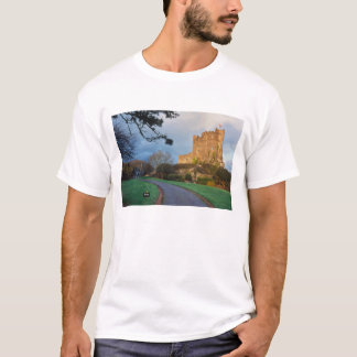 Wales - A private welsh castle near St. T-Shirt