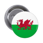 Wales_button#01 Pins