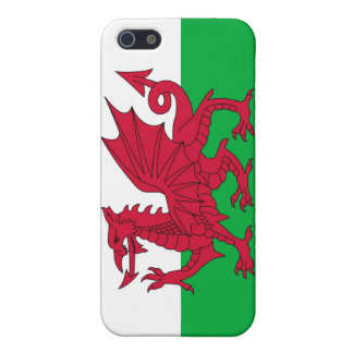 WALES CASE FOR iPhone SE/5/5s