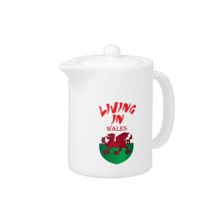 Wales coat of arms teapot
