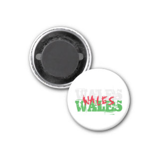Wales - Colours of the Welsh Flag Magnet