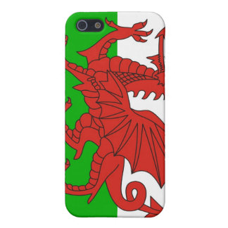 wales country dragon flag british cover for iPhone SE/5/5s