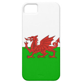 wales country dragon flag welsh british iPhone SE/5/5s case
