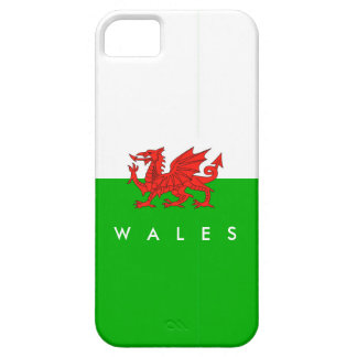 wales country flag british nation welsh symbol iPhone SE/5/5s case