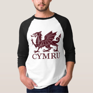 Wales CYMRU T-shirt