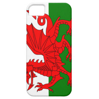 Wales Flag iPhone 5 Cover