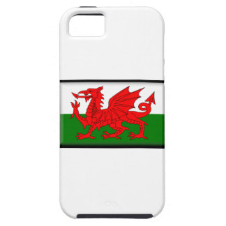 Wales Flag iPhone 5 Case