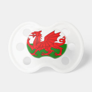 Wales Flag Pacifier
