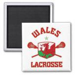 Wales Fridge Magnets
