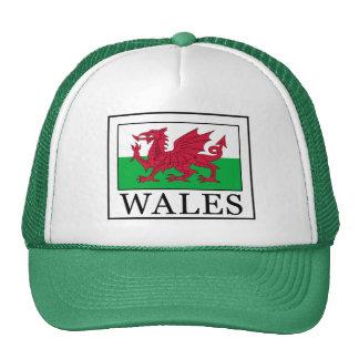 Wales hat