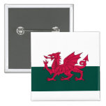 Wales Map and/or Flag Pins