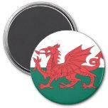 Wales Refrigerator Magnet