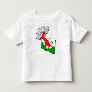 Wales six nations grand slam 2012 toddler t-shirt