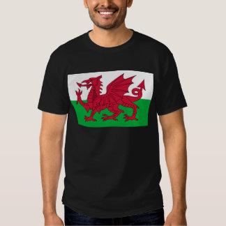 wales tee shirt