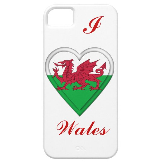 Wales Welsh flag cymru dragon iPhone SE/5/5s Case