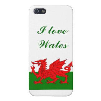 Wales Welsh flag iPhone SE/5/5s Case