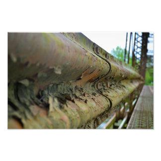 Walhonding Bridge Rail Photo Print