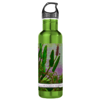 walk in beauty stainless steel water bottle