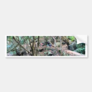 Walk in the woods bumper sticker