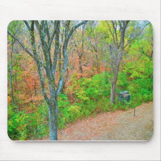Walk Into The Forest Mouse Pads