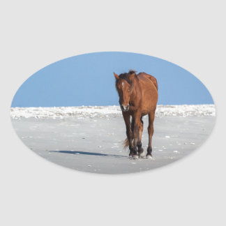 Walk on the Beach with a Wild Horse Oval Sticker