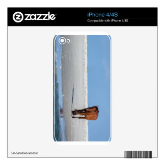 Walk on the Beach with a Wild Horse Skin For iPhone 4S
