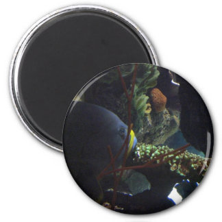 Walk Softly and Carry a Big Fish 2 Inch Round Magnet