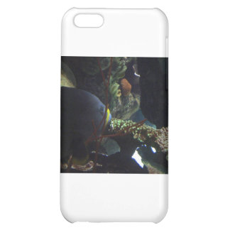 Walk Softly and Carry a Big Fish iPhone 5C Case