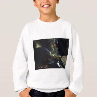 Walk Softly and Carry a Big Fish Sweatshirt