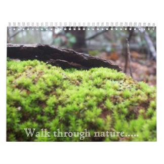 Walk through nature..... wall calendar