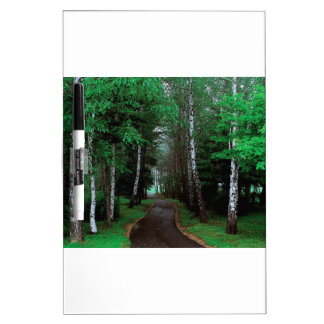 Walk Through The Forest Dry Erase Board