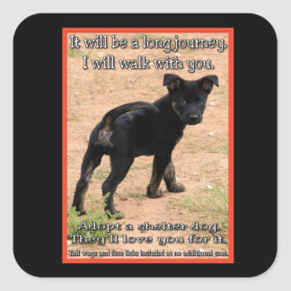Walk With You Animal Rescue Stickers