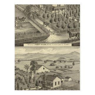 Walker, Ball residences Postcard