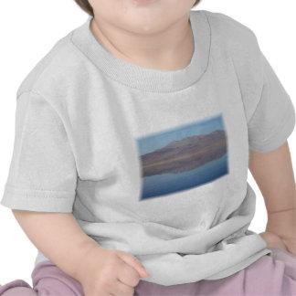 Walker Lake Mirror Image T Shirts