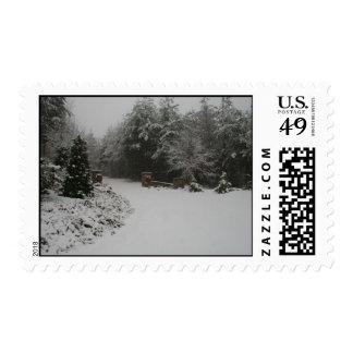 Walker Winter Postage Stamps