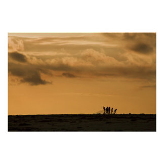 Walkers on horizon. The stages of Man Poster