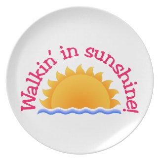 Walkin In Sunshine Party Plates