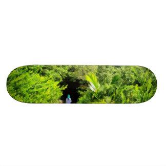 Walking a lonely path skateboard