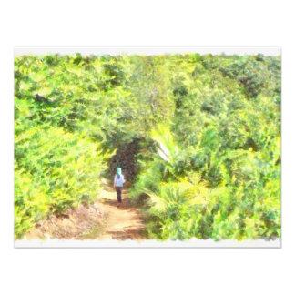 Walking along the greenery photo print