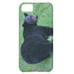 Walking Black Bear Wildlife Designer Case Case For iPhone 5C