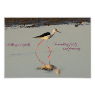 Walking Carefully is Walking Fairly and Faraway Poster