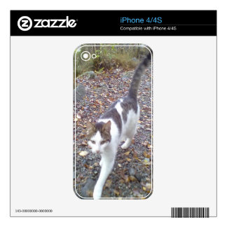 Walking cat decals for iPhone 4S