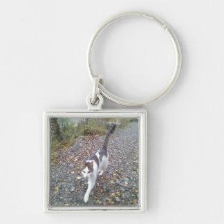 Walking cat keychain